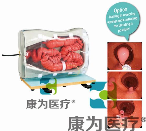 """""""康为医疗""""LM044B结肠镜训练模型B(消化内科技能模型)已升级型号改为(LM107)"""