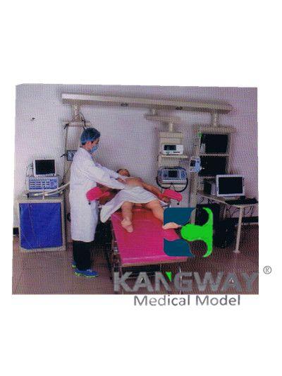 """""""康为医疗""""产妇-高仿真标准化病人实训系统 V1.0"""