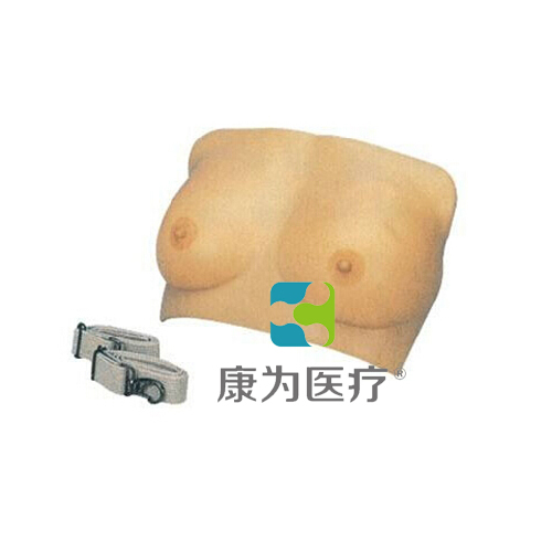 """""""康为医疗""""高级乳房检查模型"""