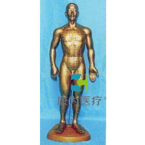 68全皮肤铜色人体针灸模型