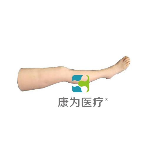 """""""康为医疗""""针灸腿部训练模型"""