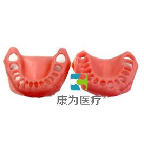 """""""康为医疗""""软牙龈模型"""