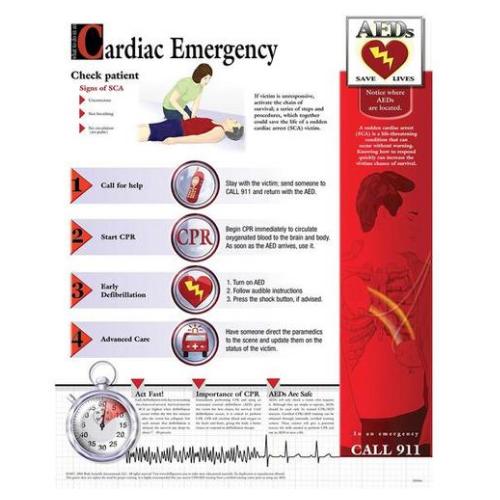 德国3B Scientific®心脏急诊图