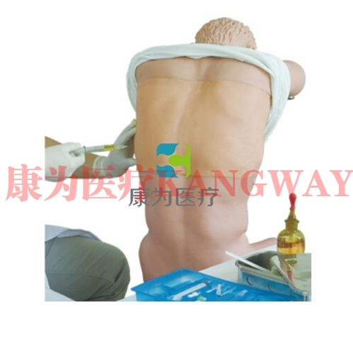 """""""康为医疗""""胸腔(背部)穿刺训练模型(基础版,升级版)"""