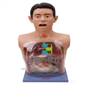 """""""康为医疗""""带警示透明洗胃模型(电子报警)"""