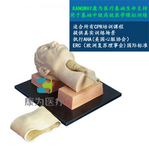 """""""康为医疗""""环甲膜穿刺和切开训练仿真模型"""