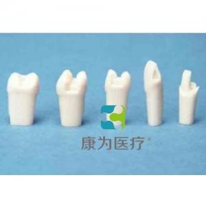 """""""康为医疗""""基牙.窝沟标准制牙"""