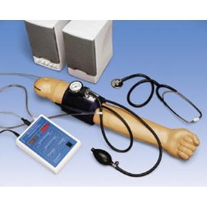 德国3B Scientific®血压臂模型,带有110 V扩音器
