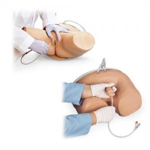 德国3B Scientific®男性和女性导尿训练套装