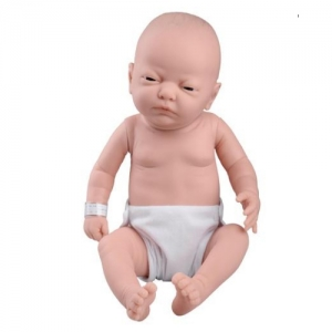 德国3B Scientific®婴儿护理模型,女