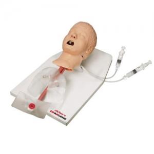 德国3B Scientific®高级儿童呼吸道训练模型