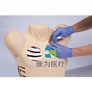"""""""康为医疗""""胸腔穿刺及对比模型II"""