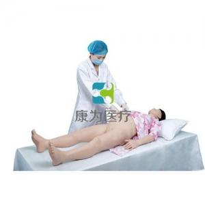 双胎产前检查模拟训练系统