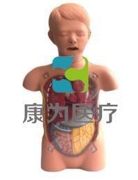 """""""康为医疗""""儿童透明洗胃训练模型,儿童洗胃操作模型,小儿透明洗胃模型"""