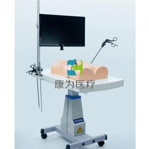 """""""康为医疗""""腹腔镜(生物仿真材料)模拟训练系统"""